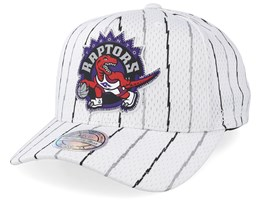 Toronto Raptors Icon White 110 Adjustable - Mitchell & Ness