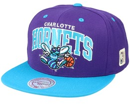 Charlotte Hornets Team Arch 2 Tone S Purple/Teal Snapback - Mitchell & Ness