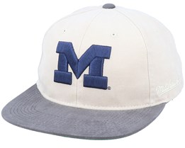 Michigan Wolverines Blockhead Deadstock Stone/Grey Snapback - Mitchell & Ness