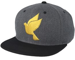 Special Charcoal/Gold Snapback - Galagowear