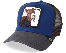 Dumbass Royal Trucker - Goorin Bros.