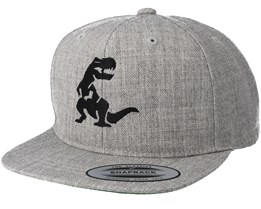 Kids Dino Grey Kids Snapback - Kiddo Cap