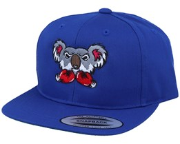 Kids Koala Bear Boxer Royal Blue Snapback - Kiddo Cap
